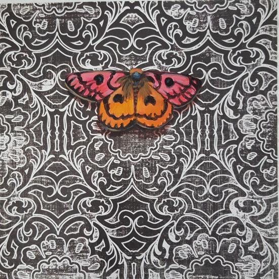 Moth18
