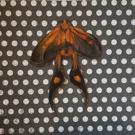 Moth28
