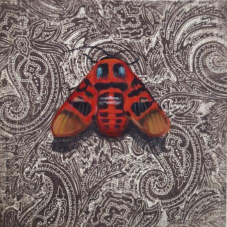 Moth4