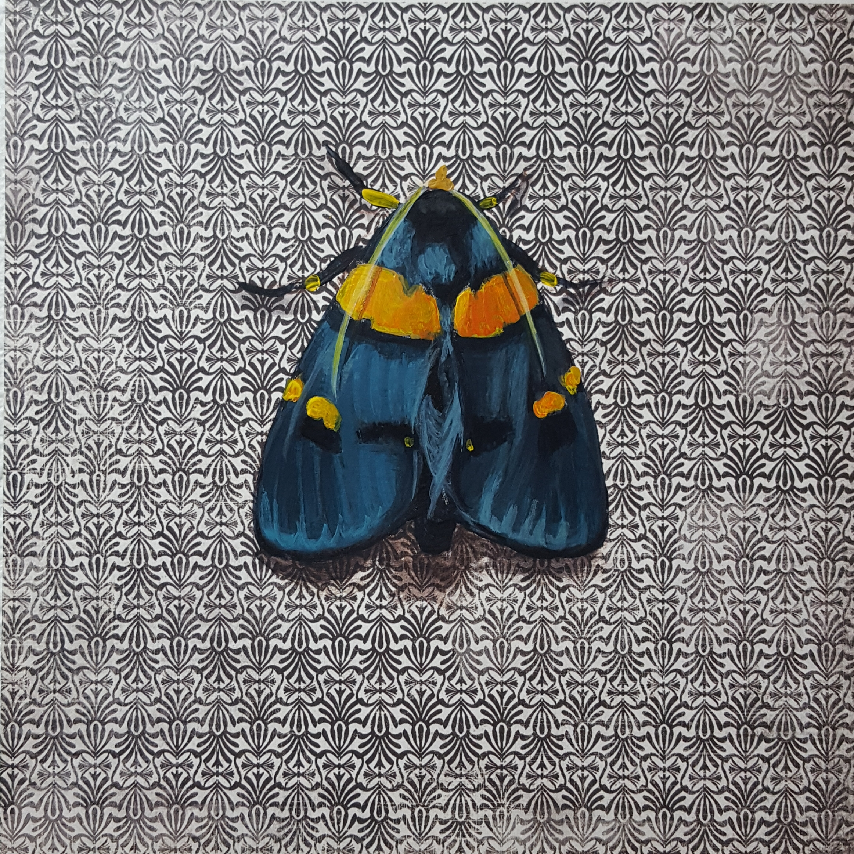 Moth6